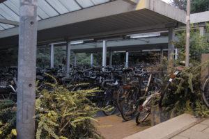 Auch in Erlangen gibt es viele Fahrrräder.... Foto: Eric Hartmann